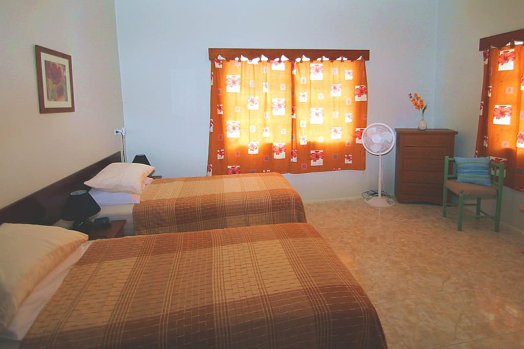 Large second bedroom with 2 twin beds.