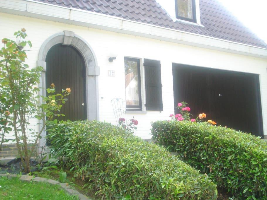 Front view with rose bushes in bloom