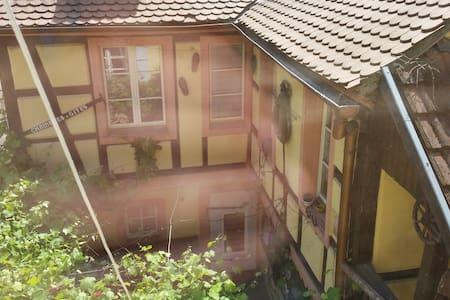 Charmant studio1 refait à neuf maison alsacienne - Colmar - Huoneisto