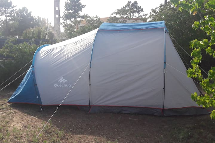 Sintra camping tent in farm 2 to 6 guests (Tent 6)