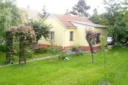 Artist house near Budapest - Erdőkertes - Haus