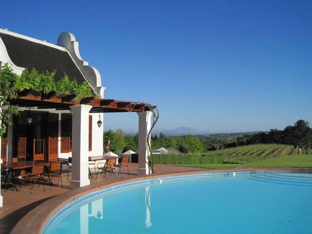 Visit a real vineyard in Paarl SA