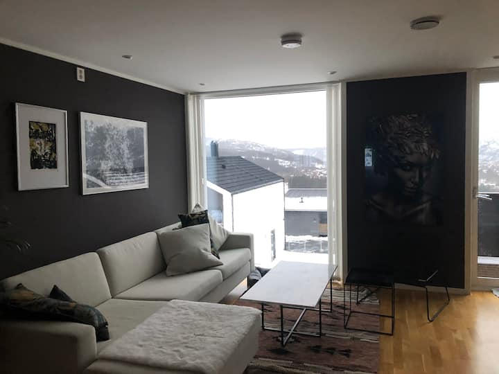 Moderne leilighet til leie