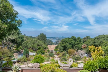 An oasis on a private estate - Royal Oaks