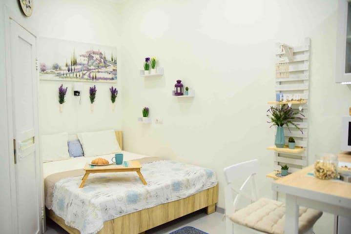 "Sweet Apartment ""Provencal lavender"" Near center!"