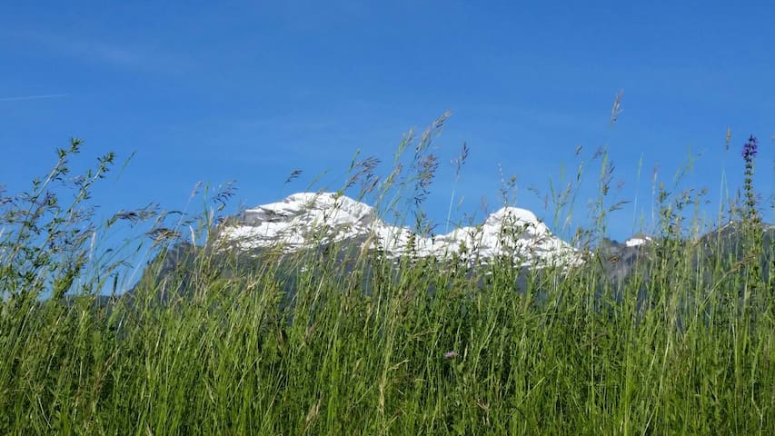 Charmantes Chalet in Liechtenstein  - Steg Triesenberg  - Cabin