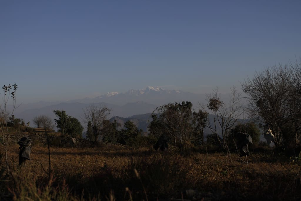 View of Himalayan snow covered peaks from Pahadi House.