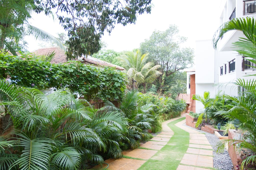 Landscaping in the Complex along side the Paved way .- Airbnb