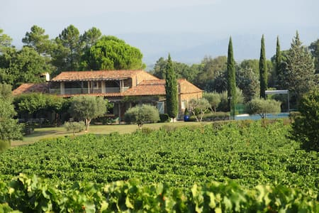 Provencal Mas on vineyard near La Garde Freinet - ラ・ガルド =フレネ