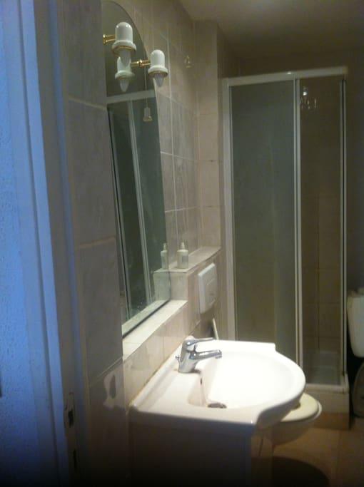 salle de bain (douche + wc)