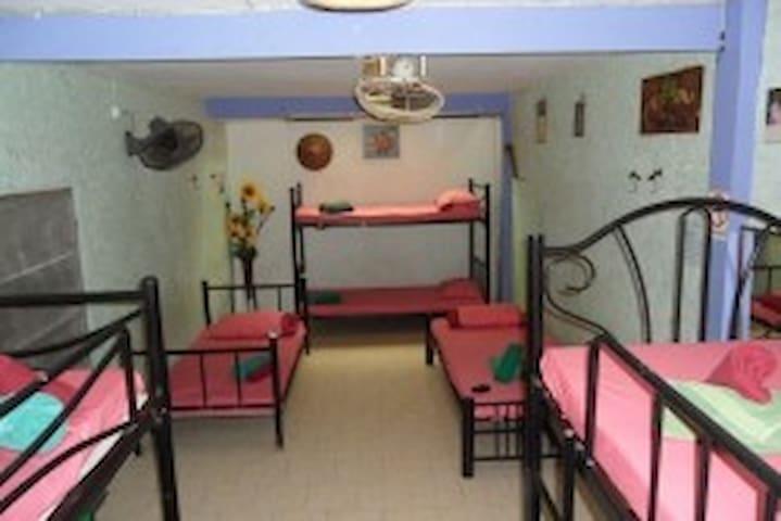 Shanti Lodge: Art House AC Dorm