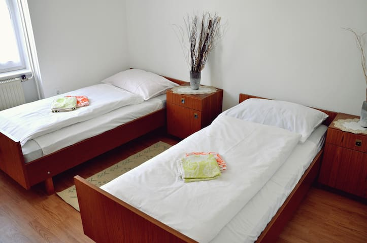 Room 1 (2 bed with common bathroom) - Žirovnica