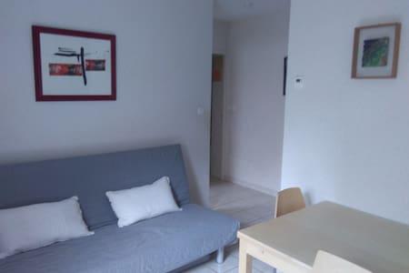 Logement rez de jardin 35 m2 2/3 p. - Brioude - Apartment