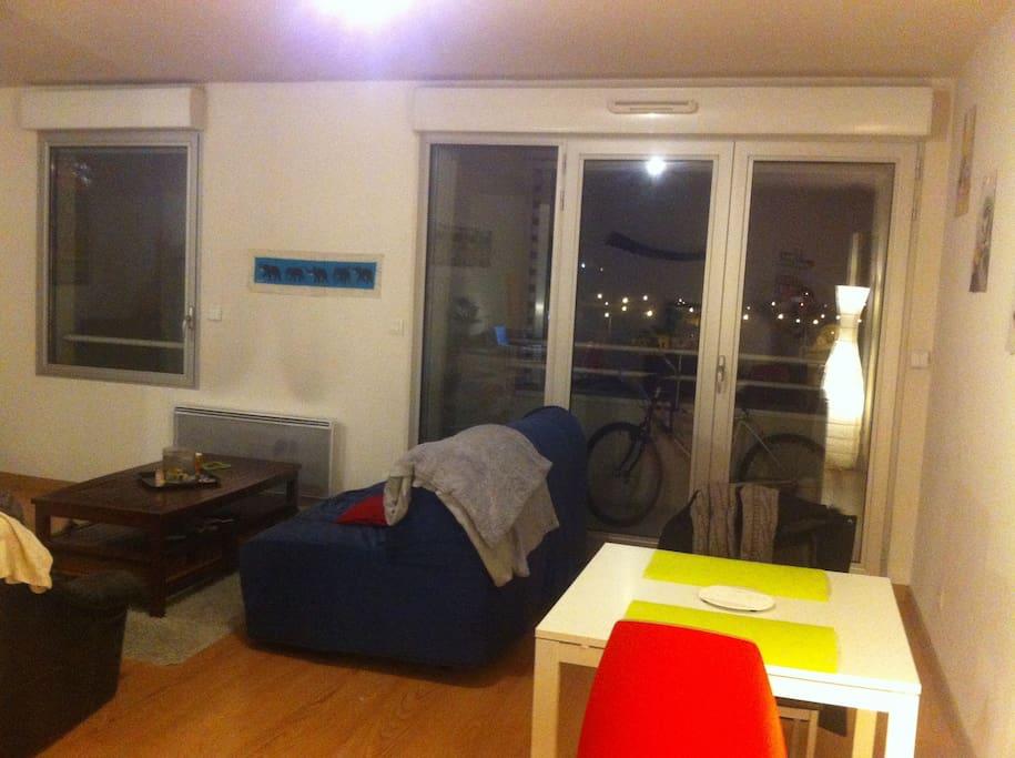 Appartement lumineux avenue thiers appartements louer for Appartement 20m2 bordeaux louer