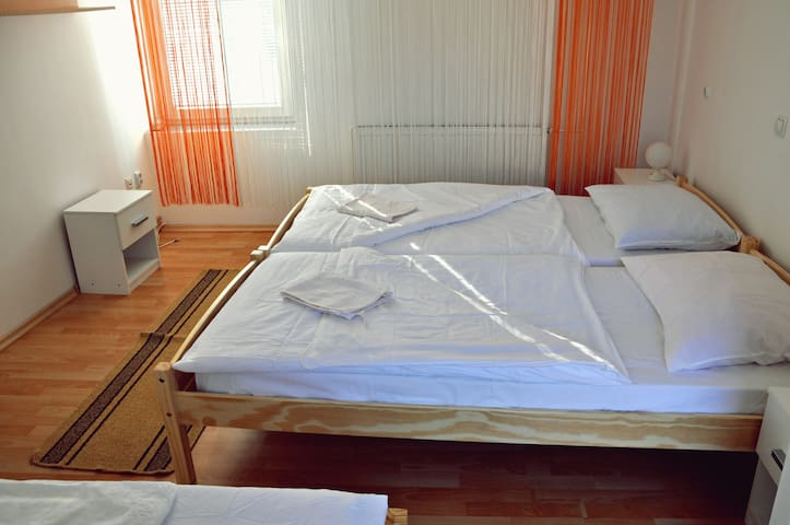 Room 18 (3 bed room with bathroom) - Žirovnica