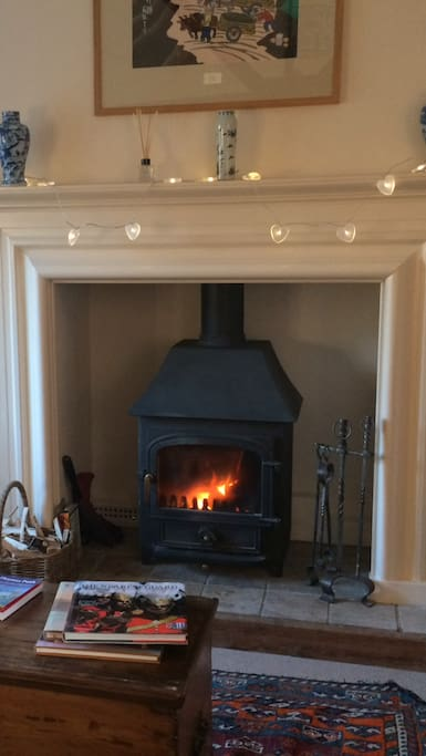 Log Burner with an endless supply of wood