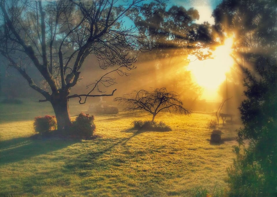 Spectacular photo of the morning sun over the front gate