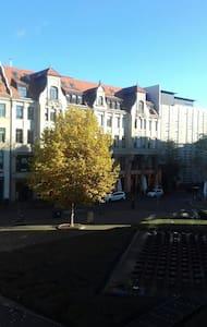 Gemütliche zentrale wohnung - Leipzig
