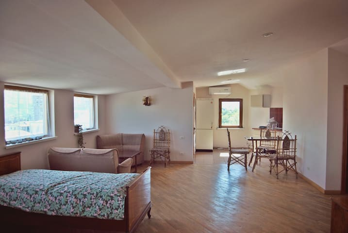 Sunny appartment in city center.. - Tbilisi - Apartment
