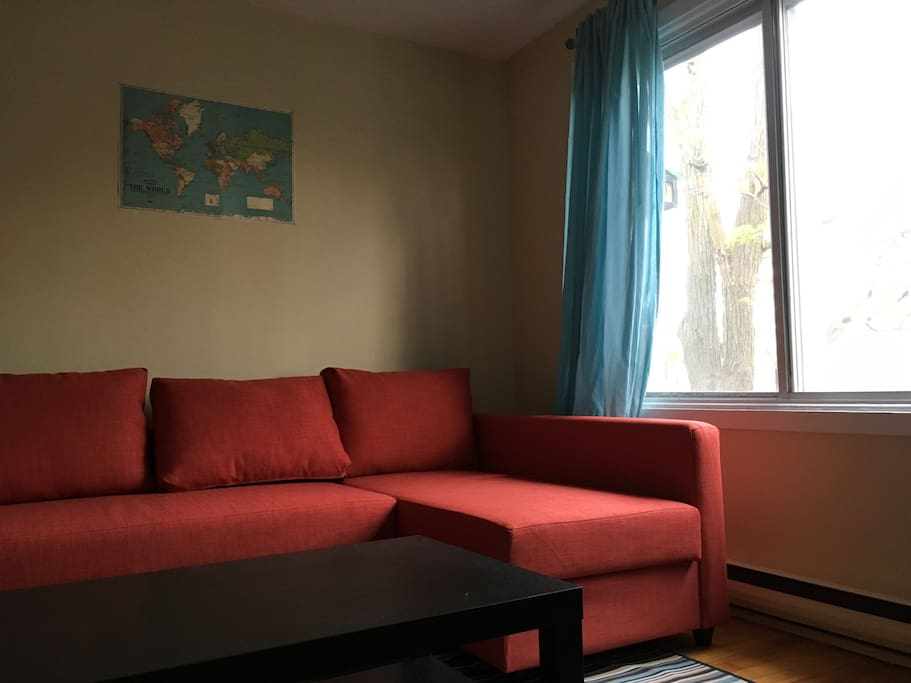 Lovely One Bedroom In Little Italy Apartments For Rent In Montr Al Qu Bec Canada