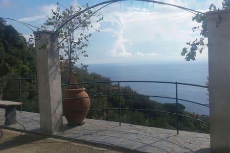 Villa il grande Cielo - Zoagli - Lejlighed