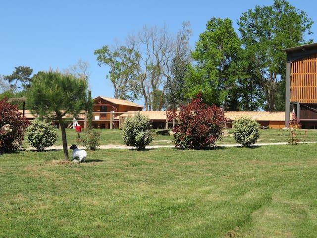 Appartement : Centre Equestre - Cadre exceptionnel - Saint-Médard-de-Mussidan - Wohnung