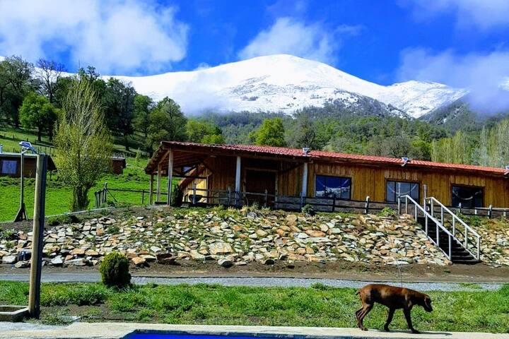 Cabañas Bellavista, Lonquimay (4 personas)