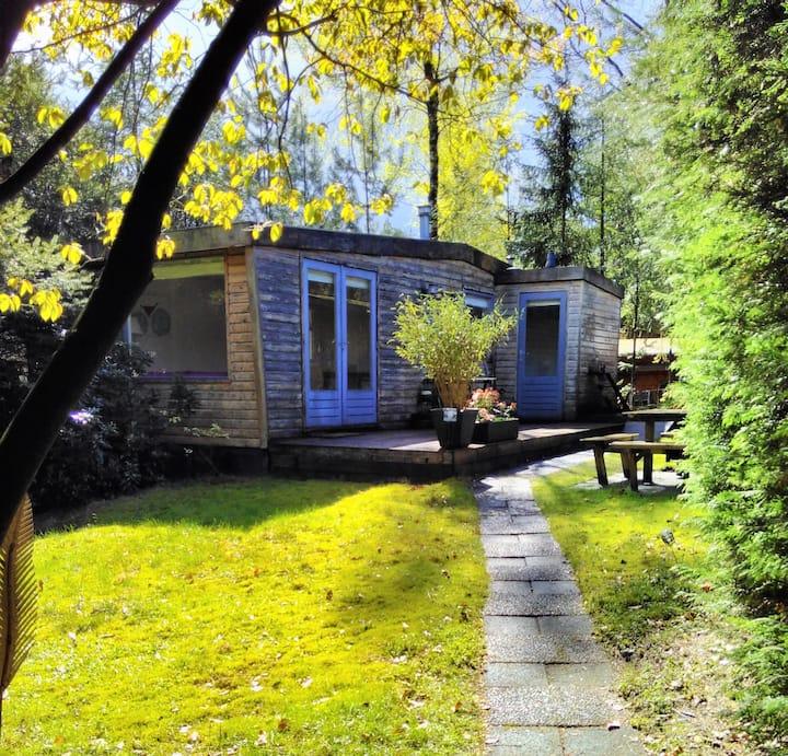 Knus houten huisje in het groen