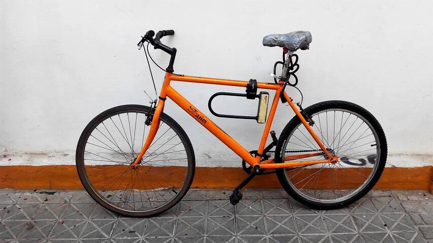 Bici gratis - free bike