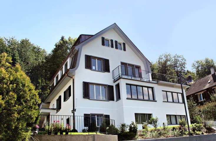 Spacious apartment near town center - Baden - Daire