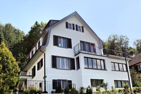 Grösszügige möblierte Wohnung Baden - Baden - Wohnung