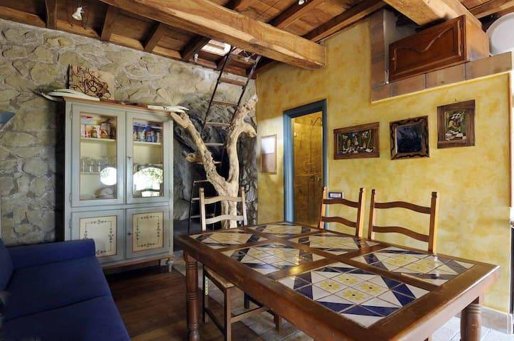 cucina abitabile e scala su albero di ulivo by Natale Valentina