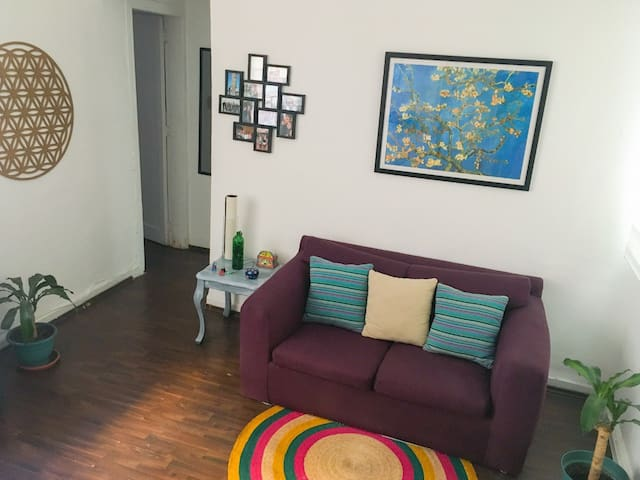 Cozy full apartment in the heart of Condesa