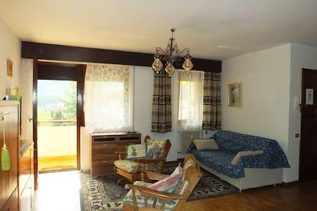 ampio appartamento soleggiato - Merano - Wohnung