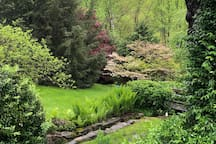 Side-yard with spring stream