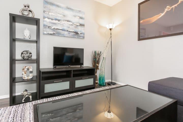 Downtown Austin Luxury Apartment (D)