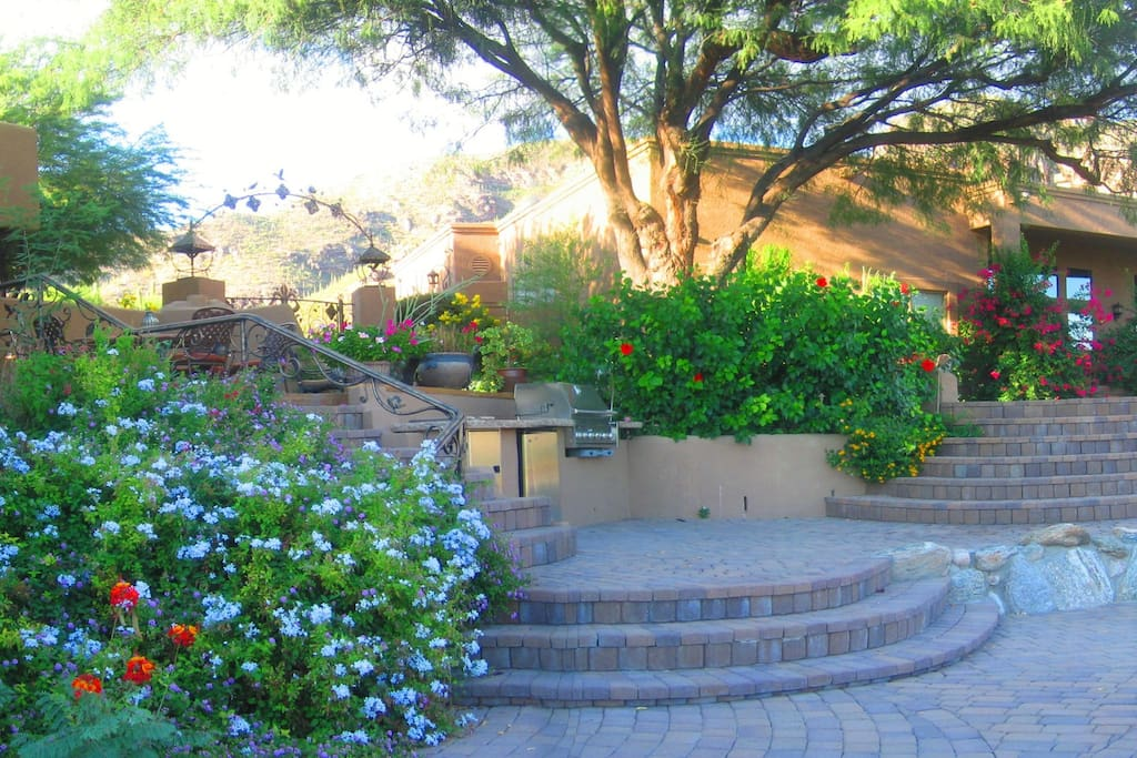View of the upper patio and BBQ area with the Catalina mountains in the background.