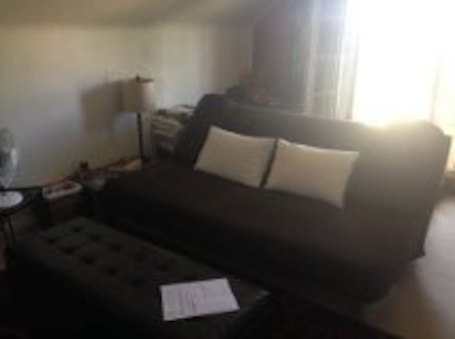 Living area with Queen Futon - sleeps 2 additional