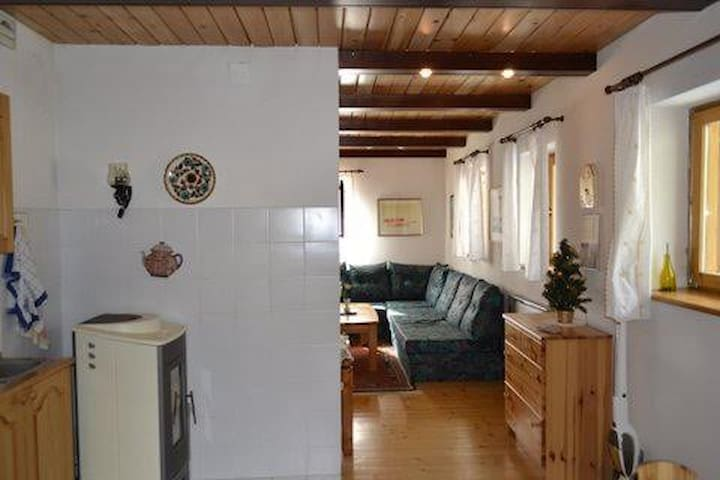 Apartment near LAKE BOHINJ