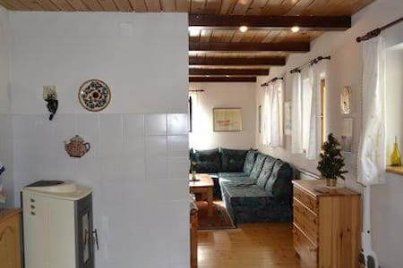 Apartment near LAKE BOHINJ - Srednja Vas v Bohinju - Lejlighed