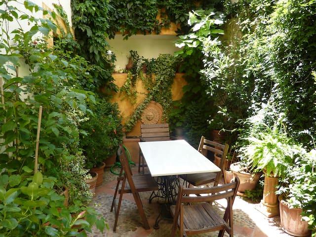 Acogedora casa restaurada S. XVII - Trujillo - Hus