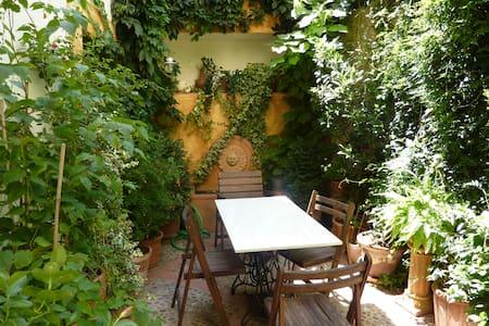 Acogedora casa restaurada S. XVII - Trujillo