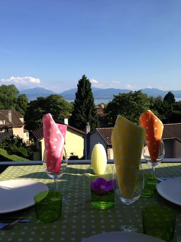 High standing flat, lake, car park - Morges - Apartment