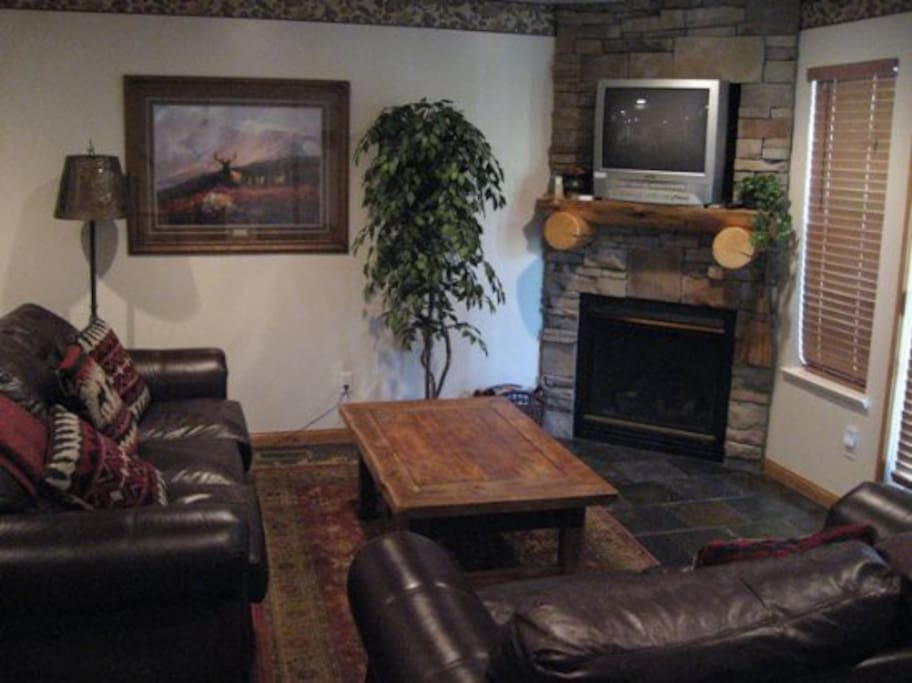 Family Room, TV, with Fireplace