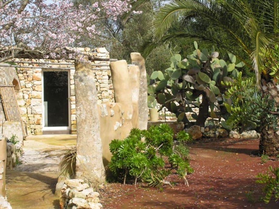 Le Greche - Petrea - access to the kitchen - Morciano di Leuca - Salento