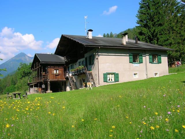 Baita Dolomiti di Brenta - Sant'Antonio di Mavignola - Lomamökki