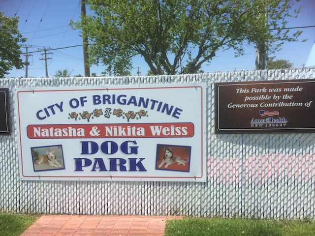 Dog Park. Bayshore Ave.  8 blocks from our property