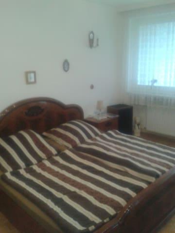 Gemütliches 1 Zimmer Apartment