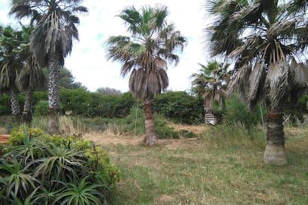 casita ecologica en el campo - Es Castell