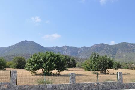 Snow-white perl of North Cyprus - Tatlısu